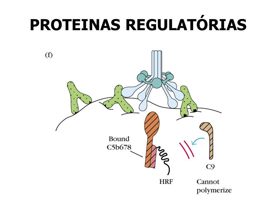 PROTEINAS REGULATÓRIAS