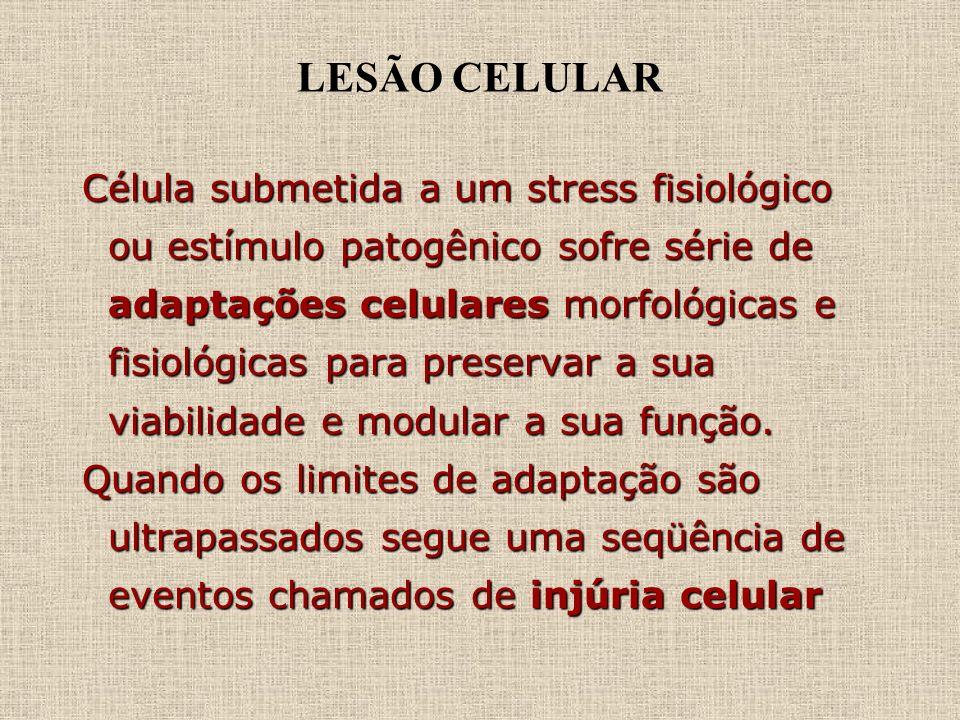 LESÃO CELULAR