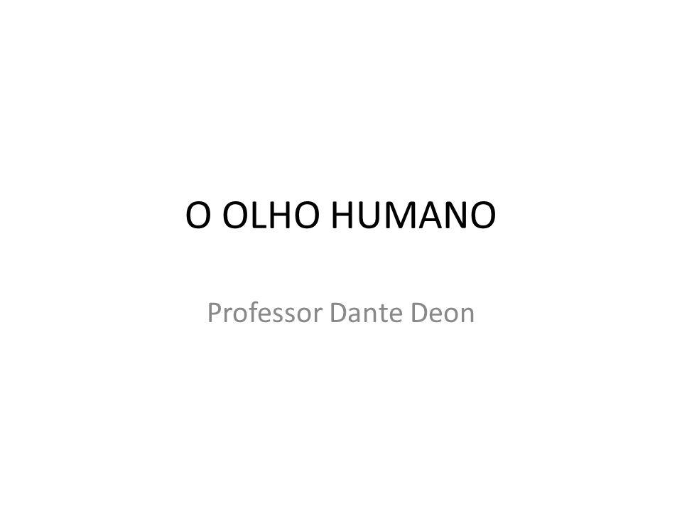 O OLHO HUMANO Professor Dante Deon