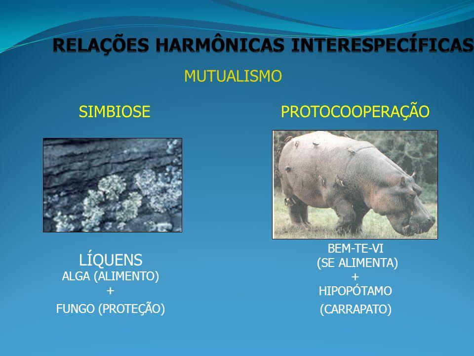 RELAÇÕES HARMÔNICAS INTERESPECÍFICAS