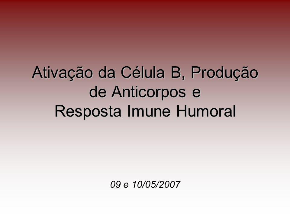 Ativação da Célula B, Produção de Anticorpos e Resposta Imune Humoral