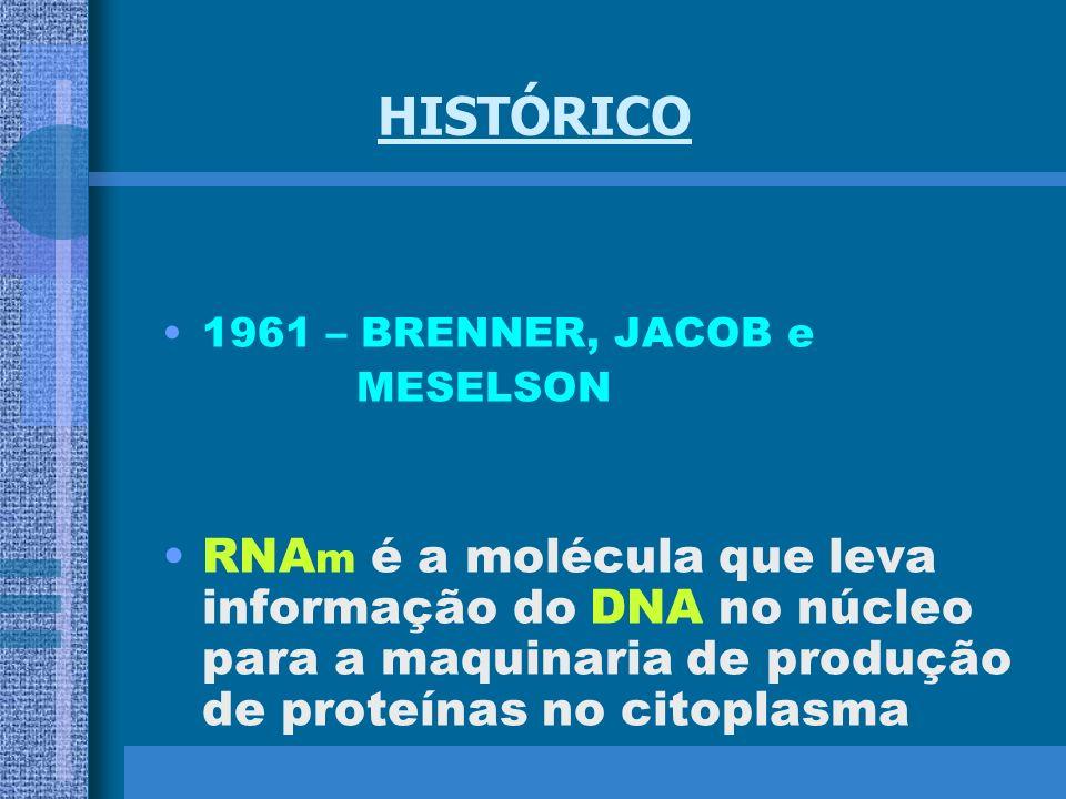 HISTÓRICO 1961 – BRENNER, JACOB e. MESELSON.