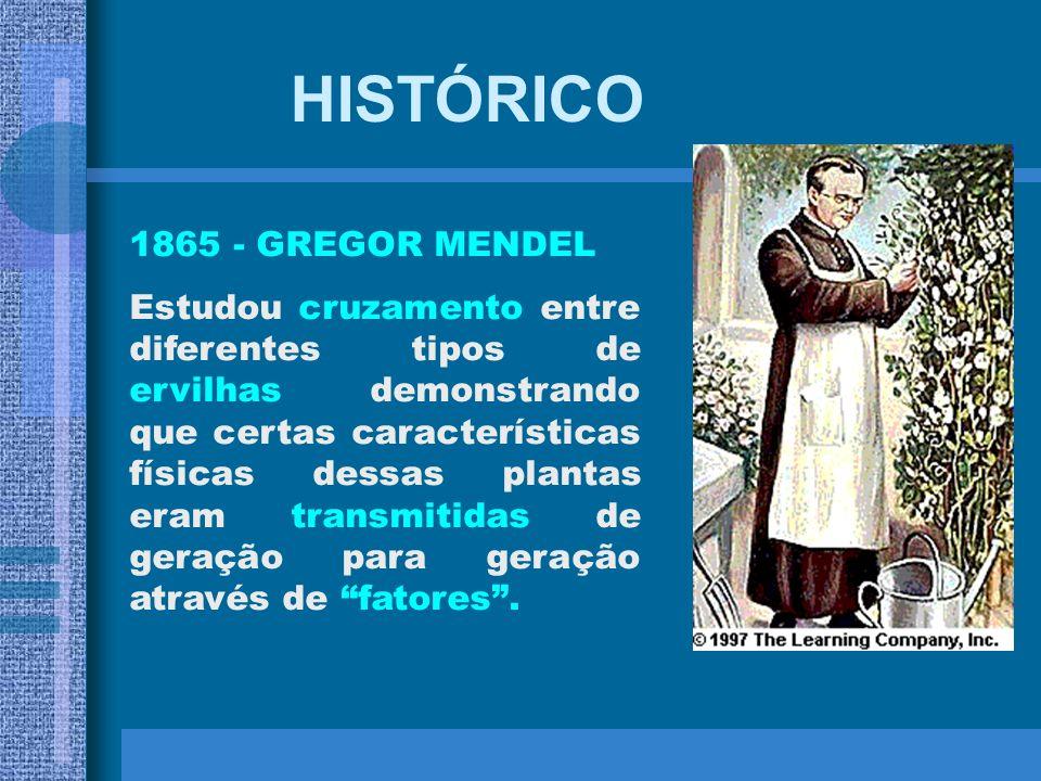 HISTÓRICO 1865 - GREGOR MENDEL