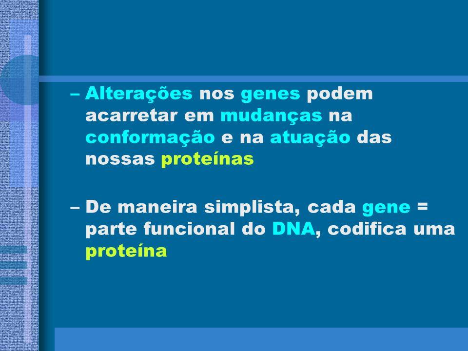 Alterações nos genes podem acarretar em mudanças na conformação e na atuação das nossas proteínas