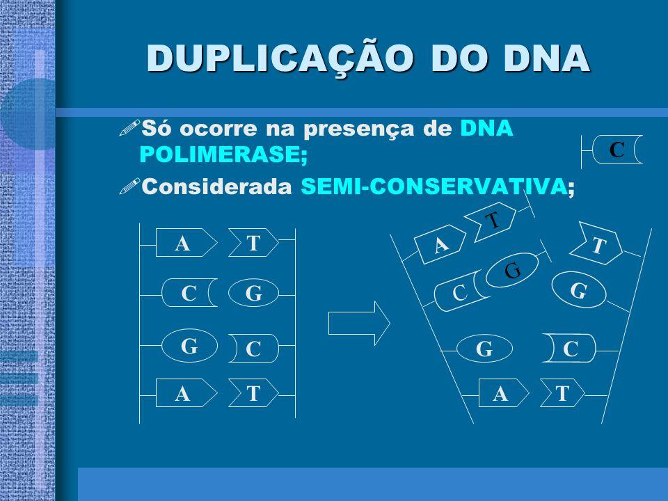 DUPLICAÇÃO DO DNA Só ocorre na presença de DNA POLIMERASE;