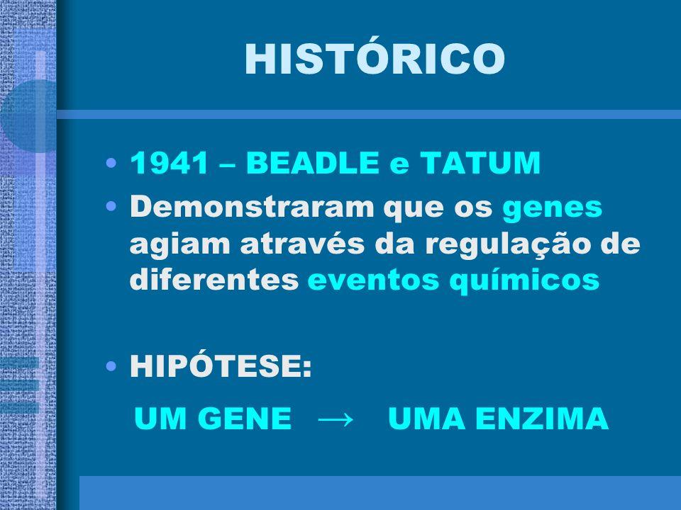 HISTÓRICO 1941 – BEADLE e TATUM