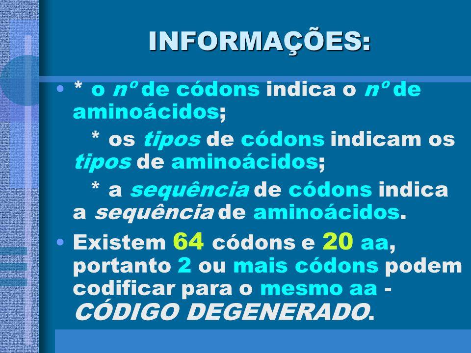 INFORMAÇÕES: * o nº de códons indica o nº de aminoácidos;