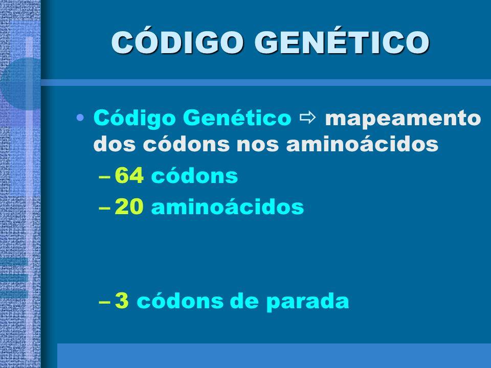 CÓDIGO GENÉTICOCódigo Genético  mapeamento dos códons nos aminoácidos.