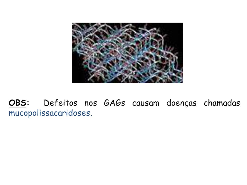 OBS: Defeitos nos GAGs causam doenças chamadas mucopolissacaridoses.