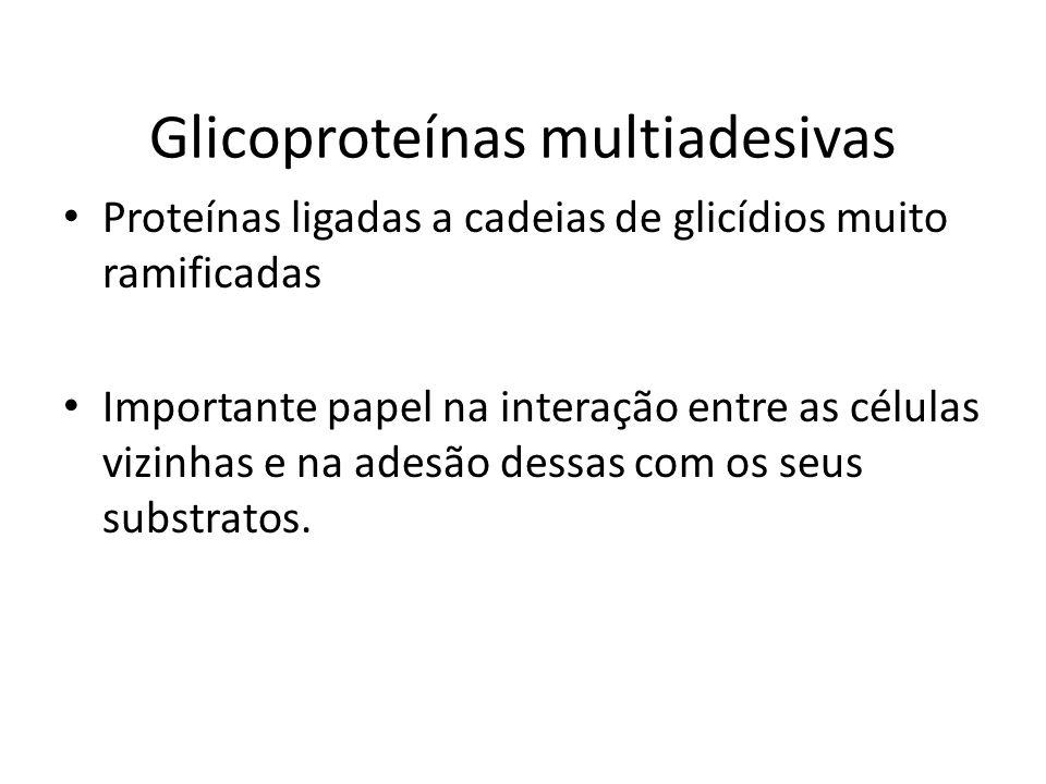 Glicoproteínas multiadesivas