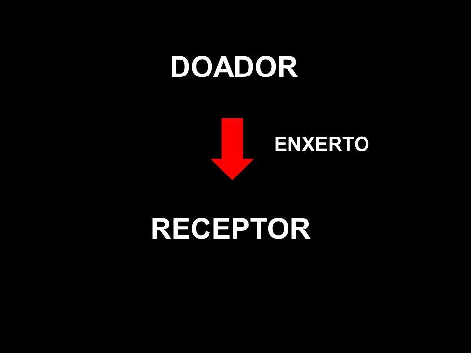 DOADOR ENXERTO RECEPTOR