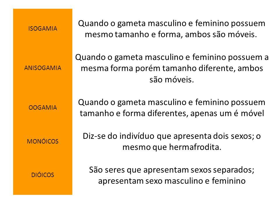 ISOGAMIAQuando o gameta masculino e feminino possuem mesmo tamanho e forma, ambos são móveis. ANISOGAMIA.