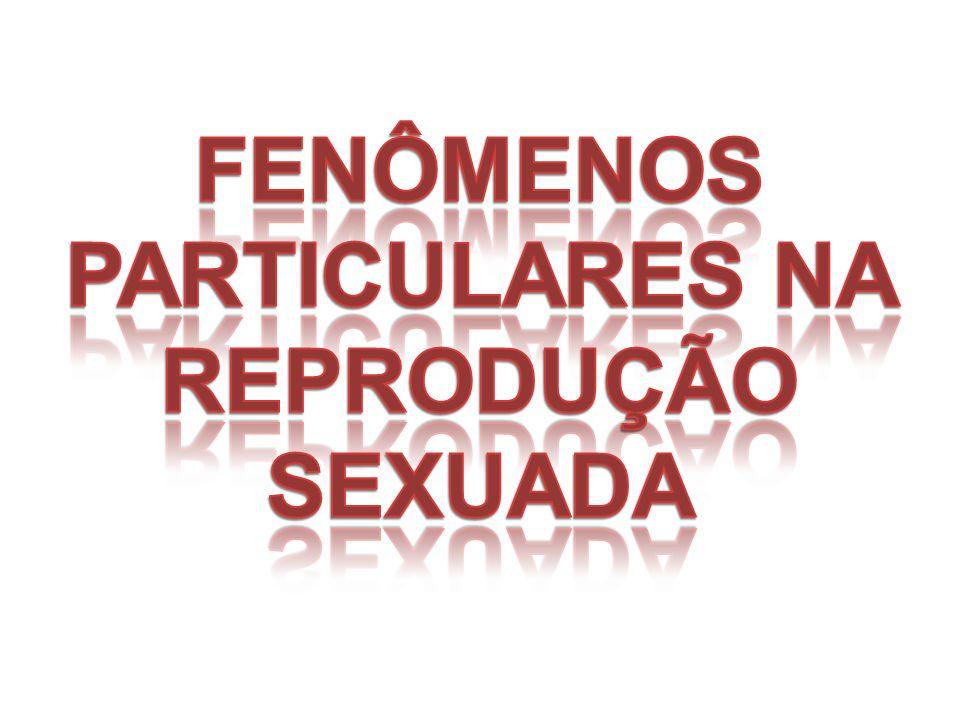 FENÔMENOS PARTICULARES NA REPRODUÇÃO SEXUADA