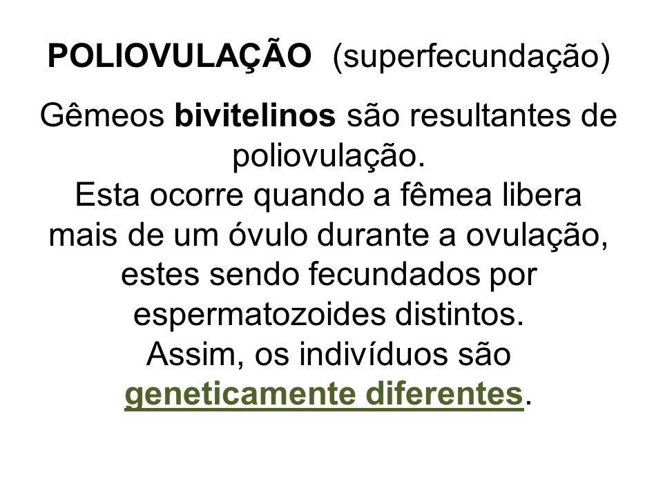 Assim, os indivíduos são geneticamente diferentes.