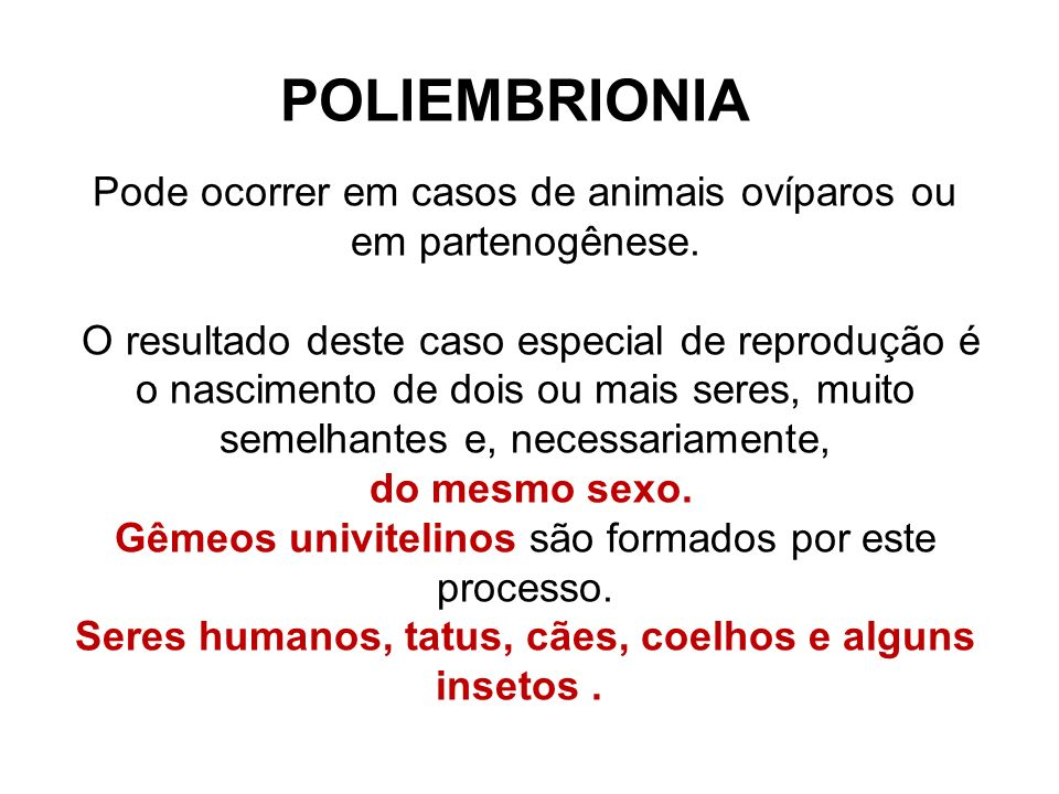 Seres humanos, tatus, cães, coelhos e alguns insetos .