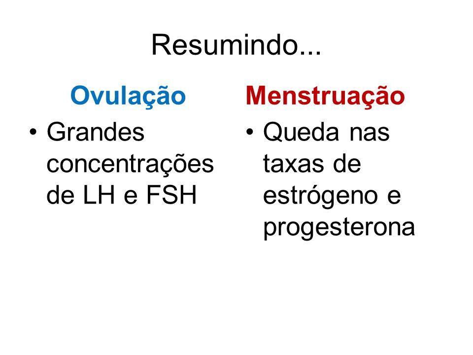 Resumindo... Ovulação Menstruação Grandes concentrações de LH e FSH