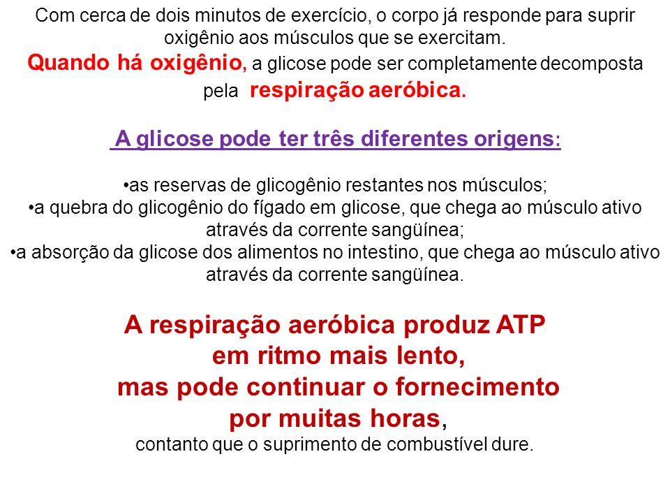 A respiração aeróbica produz ATP em ritmo mais lento,
