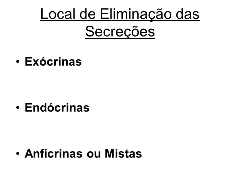 Local de Eliminação das Secreções