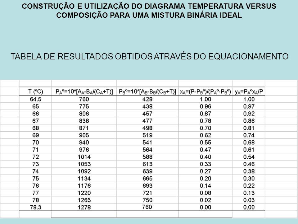 TABELA DE RESULTADOS OBTIDOS ATRAVÉS DO EQUACIONAMENTO