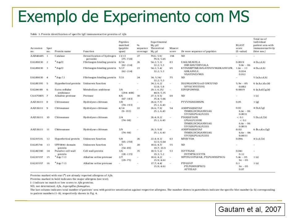 Exemplo de Experimento com MS