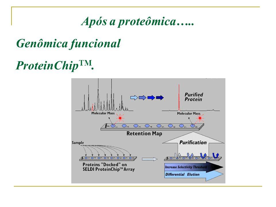 Após a proteômica….. Genômica funcional ProteinChipTM.