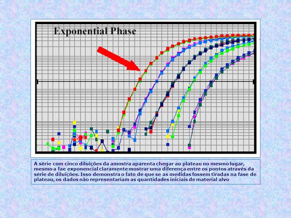 A série com cinco diluições da amostra aparenta chegar ao plateau no mesmo lugar, mesmo a fae exponencial claramente mostrar uma diferença entre os pontos através da série de diluições.