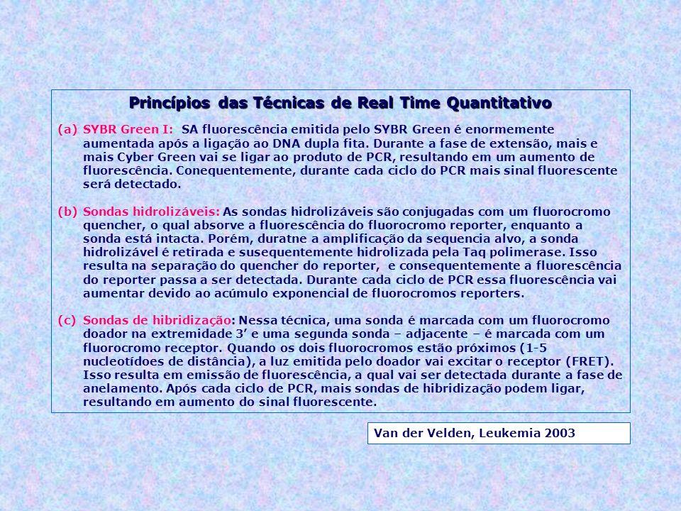 Princípios das Técnicas de Real Time Quantitativo