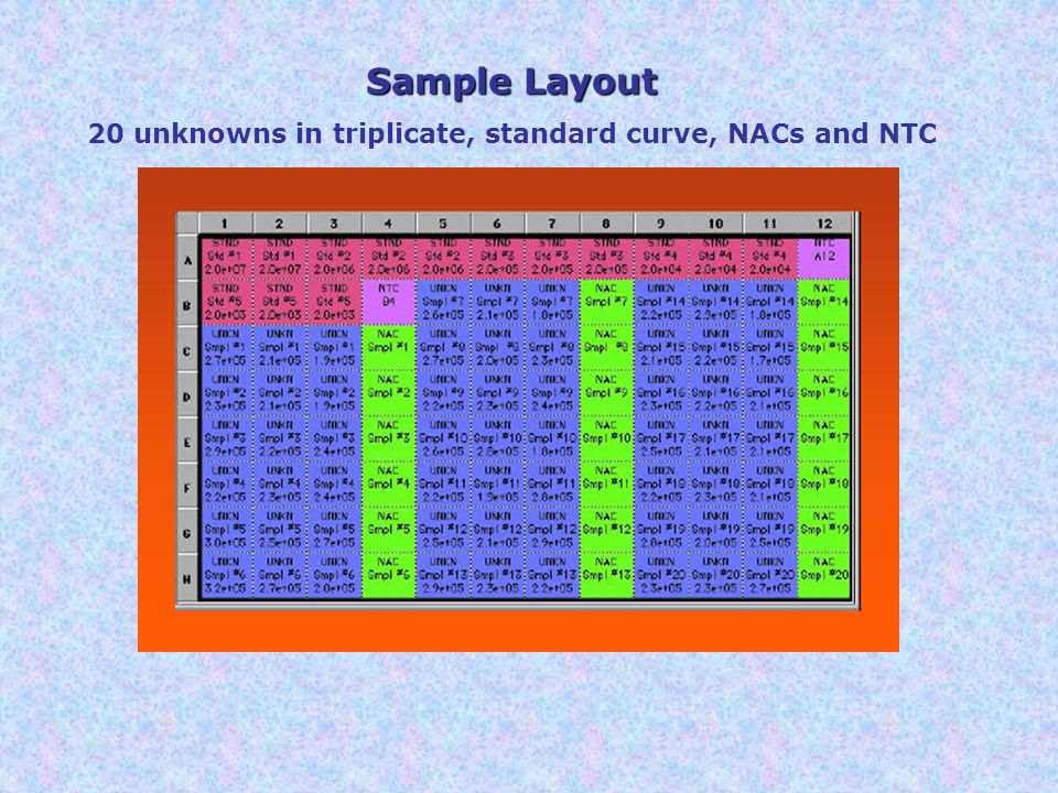 20 unknowns in triplicate, standard curve, NACs and NTC
