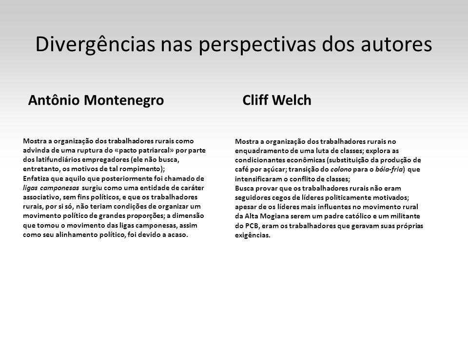Divergências nas perspectivas dos autores