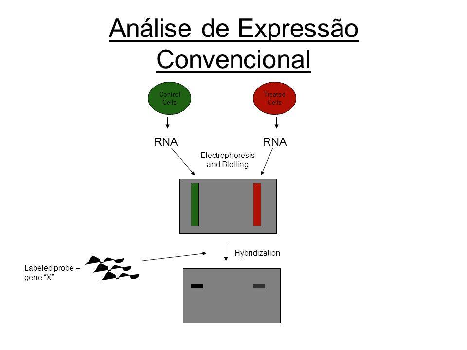 Análise de Expressão Convencional