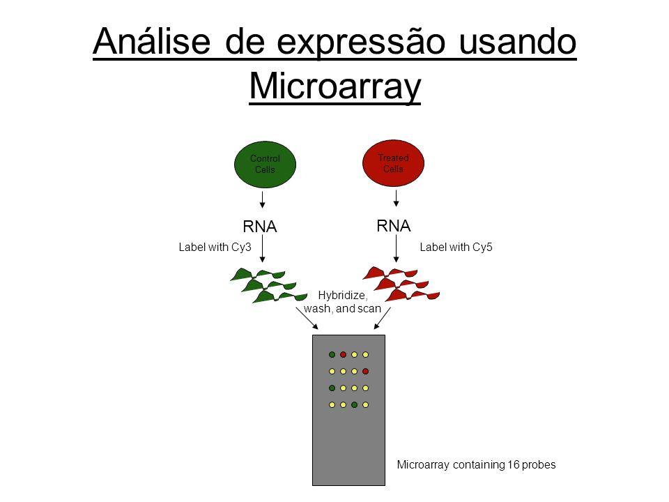 Análise de expressão usando Microarray
