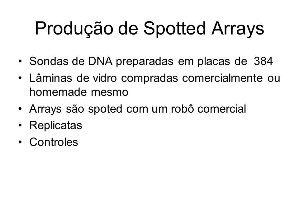 Produção de Spotted Arrays