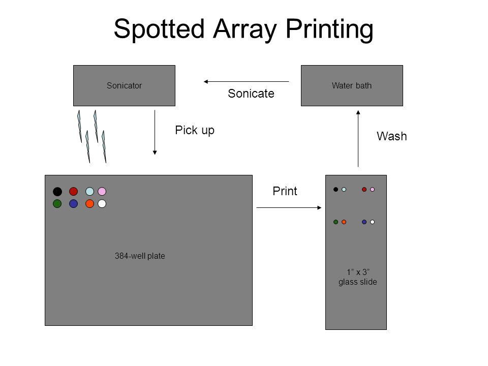 Spotted Array Printing
