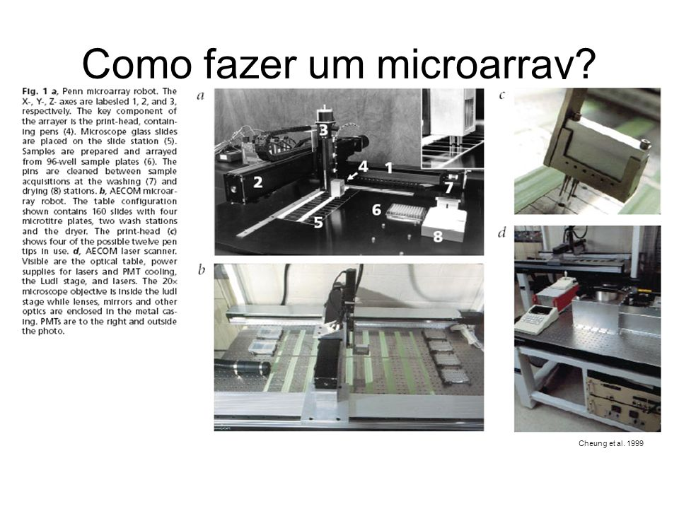 Como fazer um microarray