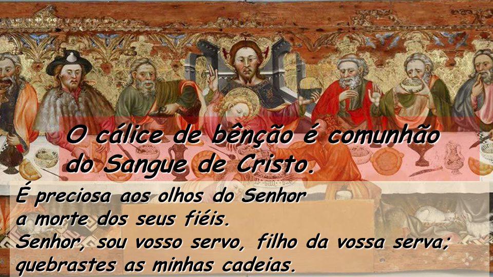 O cálice de bênção é comunhão do Sangue de Cristo.