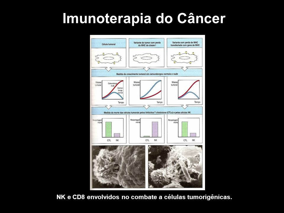 Imunoterapia do Câncer