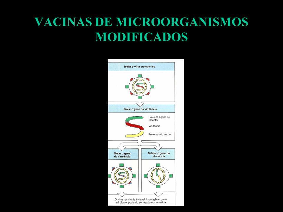 VACINAS DE MICROORGANISMOS MODIFICADOS