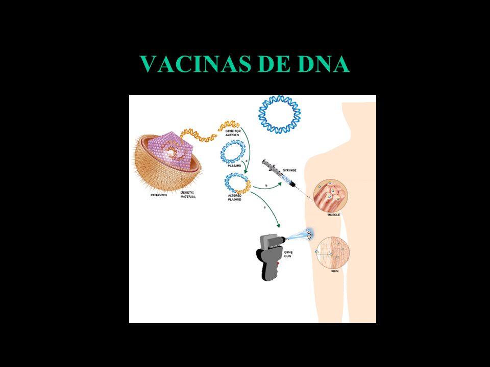VACINAS DE DNA