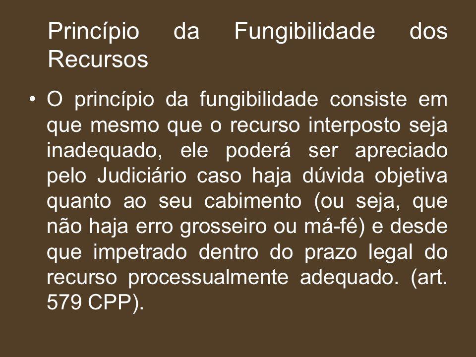 Princípio da Fungibilidade dos Recursos