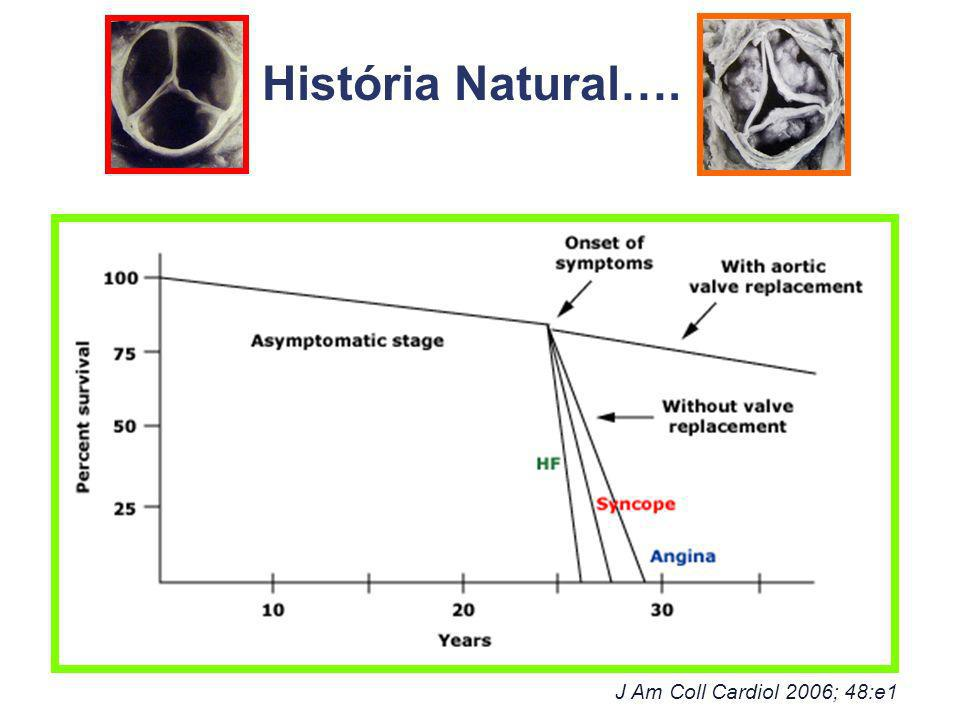 História Natural…. J Am Coll Cardiol 2006; 48:e1