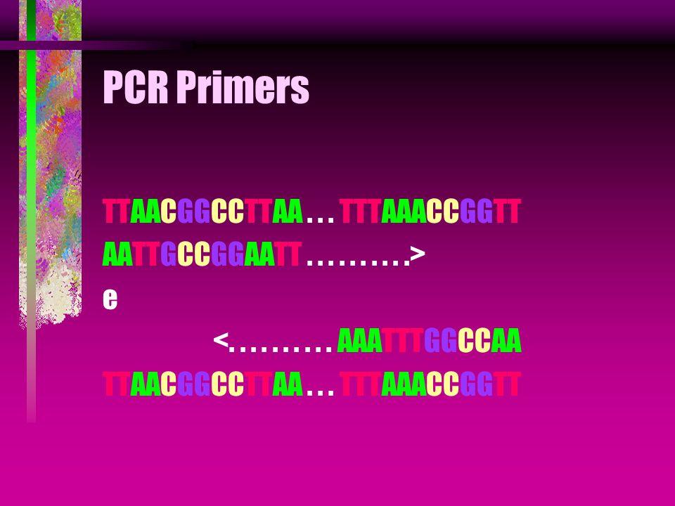 PCR Primers TTAACGGCCTTAA . . . TTTAAACCGGTT