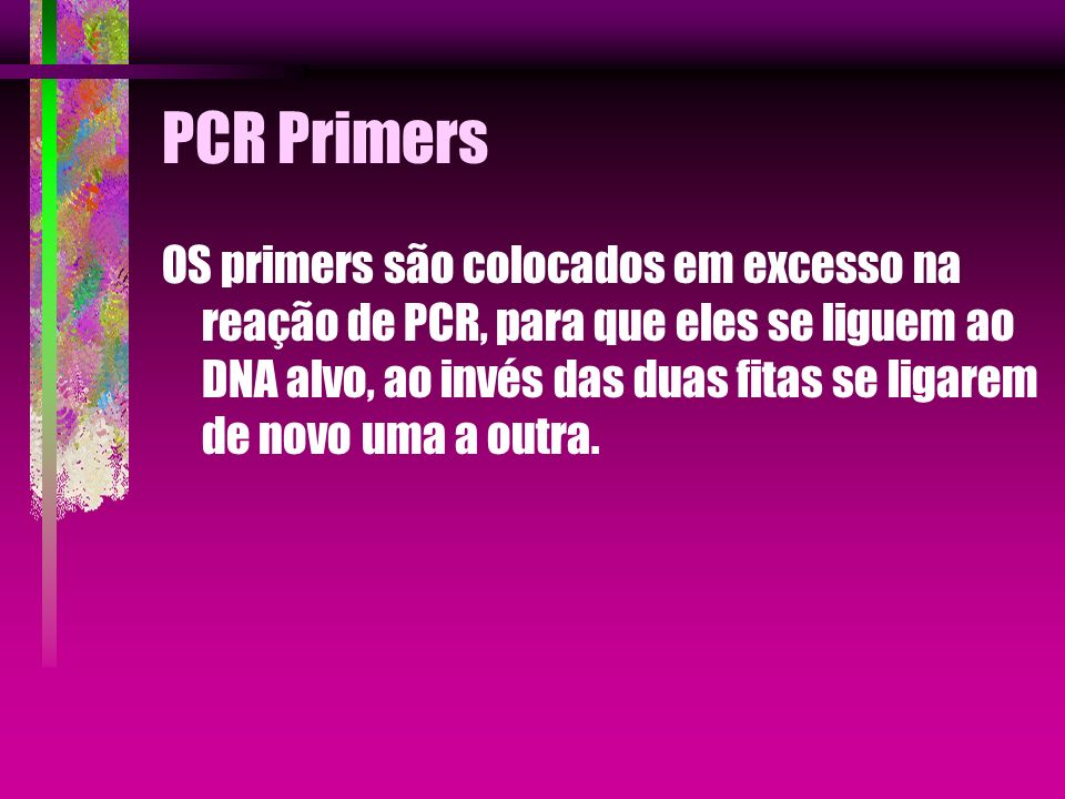 PCR Primers