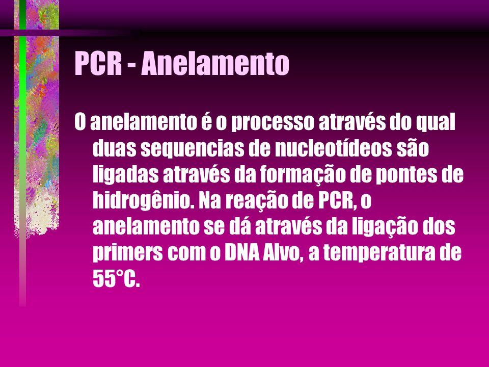 PCR - Anelamento