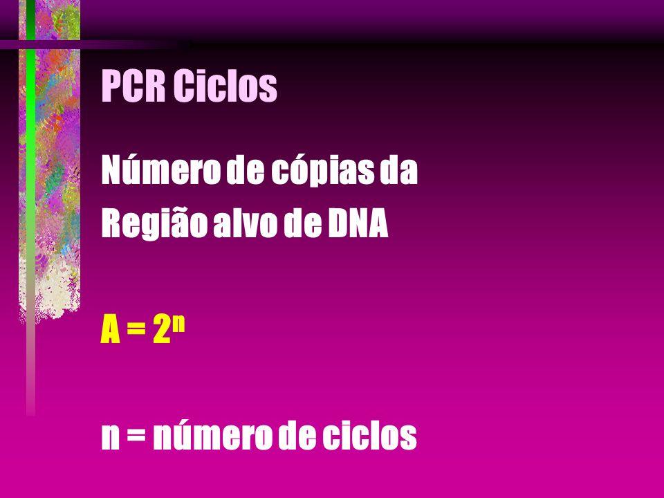 PCR Ciclos Número de cópias da Região alvo de DNA A = 2n