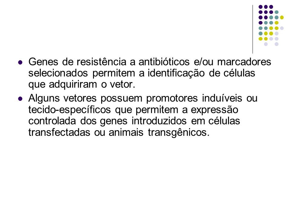 Genes de resistência a antibióticos e/ou marcadores selecionados permitem a identificação de células que adquiriram o vetor.