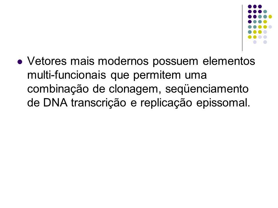 Vetores mais modernos possuem elementos multi-funcionais que permitem uma combinação de clonagem, seqüenciamento de DNA transcrição e replicação epissomal.