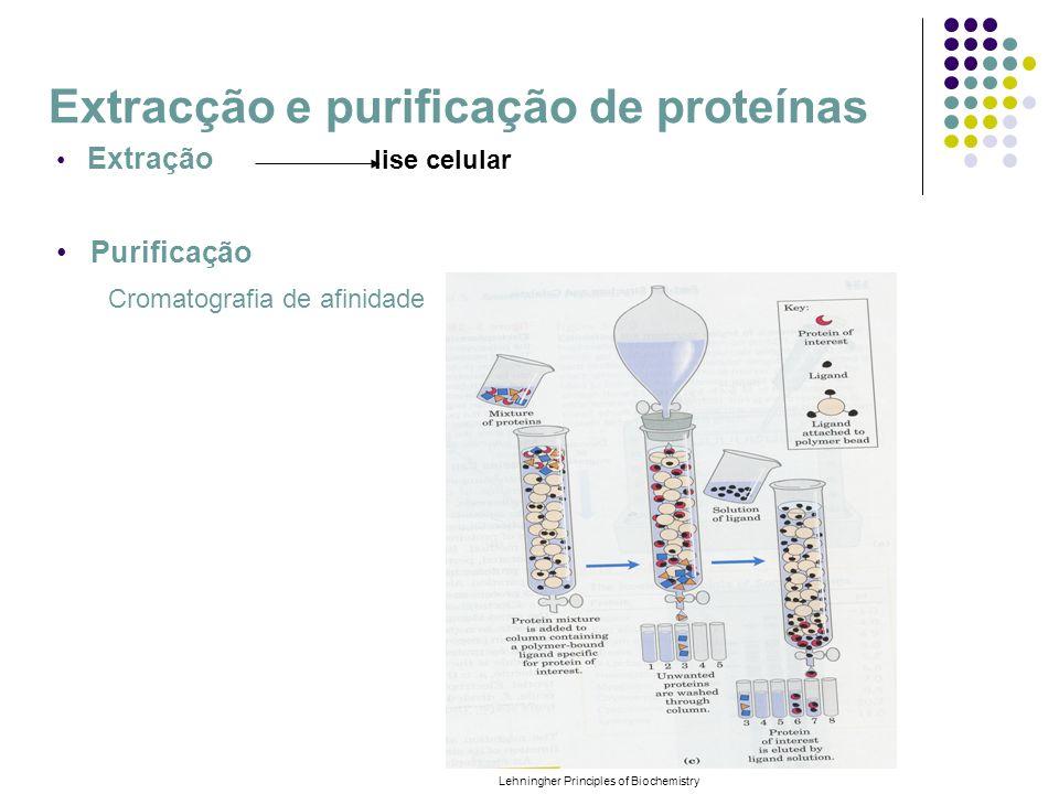 Extracção e purificação de proteínas