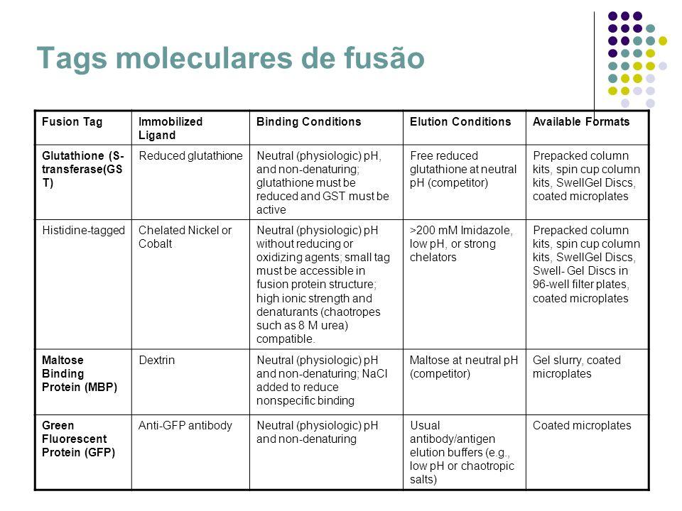 Tags moleculares de fusão