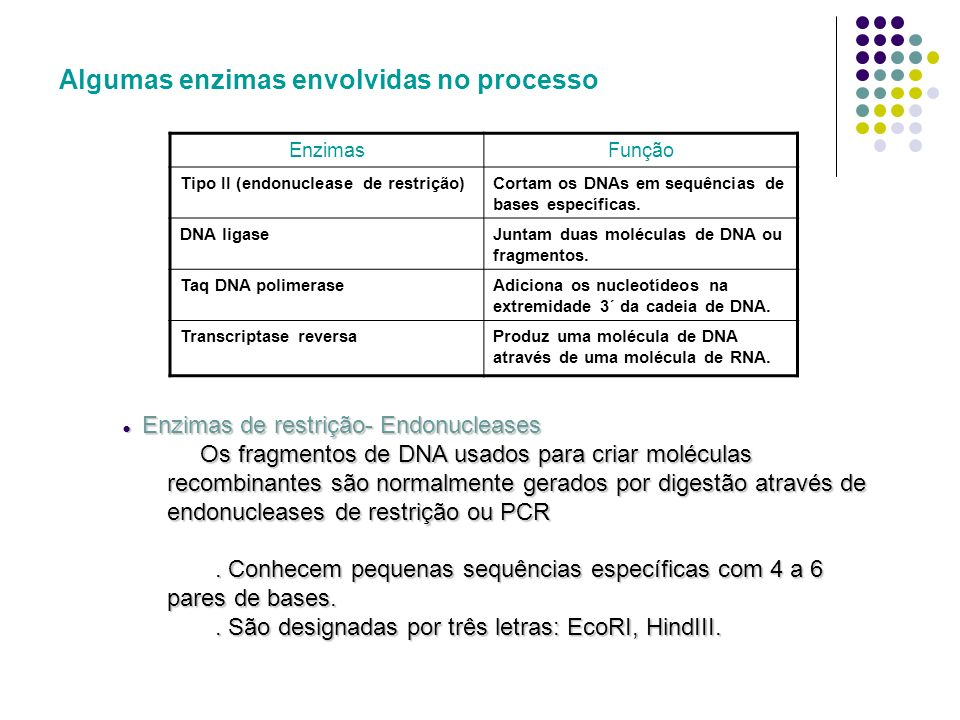Algumas enzimas envolvidas no processo