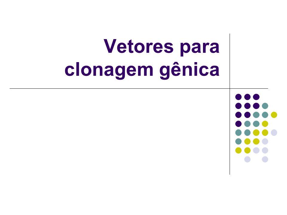 Vetores para clonagem gênica